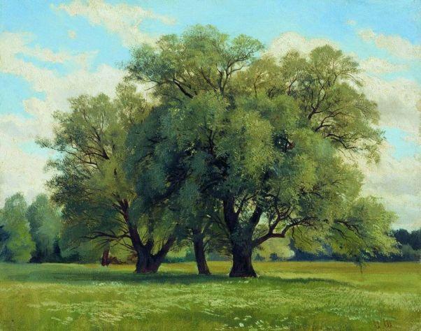 Дубки. Картина Ивана Шишкина