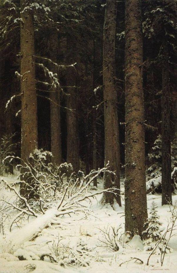 Еловый лес зимой. 1884