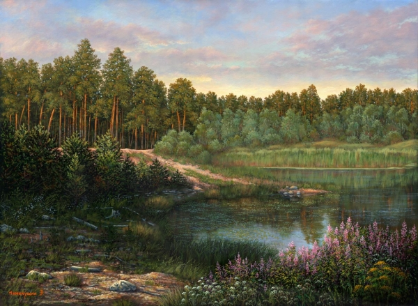 Evening on the forest lake