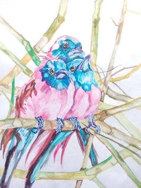 цветные птички