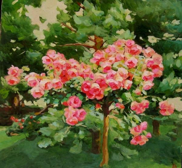 Сосны и розы /  Александр Федоров