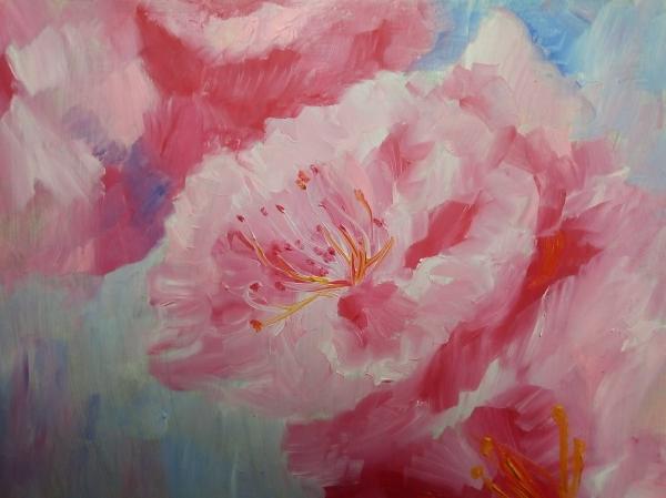 Цветение вишни 3