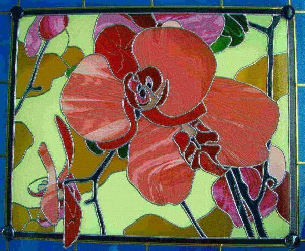Орхидеи 2010г