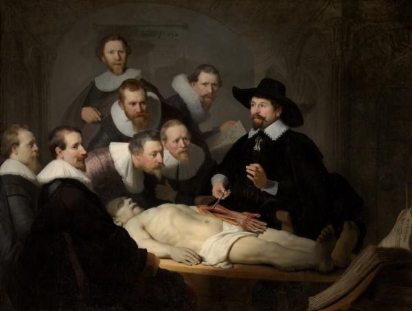 Урок анатомии доктора Тульпа