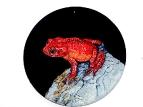 Красная лягушка