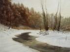 Плиса зимним утром