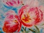 Розовые тюльпаны 2