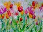Тюльпаны 5