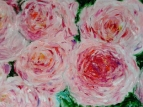 Розы Анджи Романтика