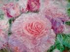 Розовые розы 4