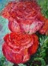 Розы 6