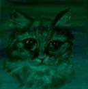 Кошки - 3