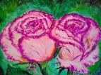 Розовые розы 7