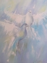 Голуби мира