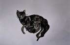 Кошки - 1