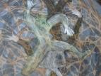 фрагмент образа в паутине ...3031