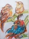 цветные птички 2