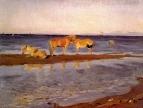 Лошади на взморье. 1905
