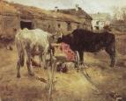 Волы. 1885