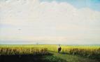 Степь. Нива. 1875