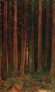 Закат солнца в лесу. 1878