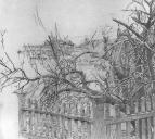 Дерево у забора. 1903-1904