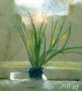 Растение 2004