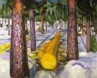 1911-12 le tronc jaune