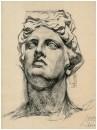 Голова Аполлона_1881