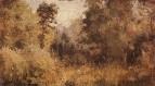 Парк в Ольшанке. 1877