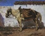 Белая лошадка. Нормандия. 1874