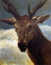 Head_Of_A_Stag