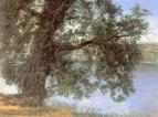Дерево в тени над водой в окрестностях Кастель-Гандольфо. Конец 1840-х-начало 1850-х