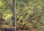 Дерево у ручья. Левый и правый фрагменты. 1830-е