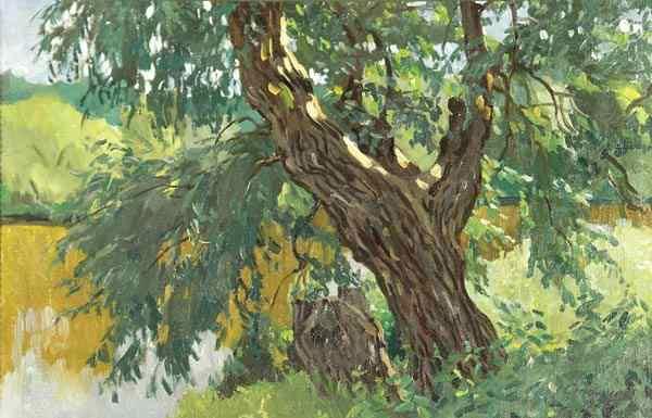 Над рекой Жиздрой 1927 г.