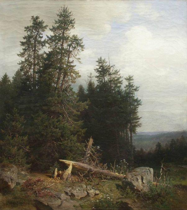 На лесной опушке