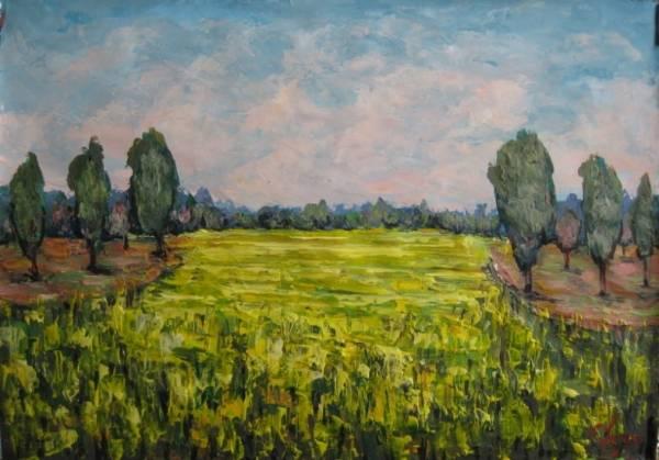 Рапсовое поле