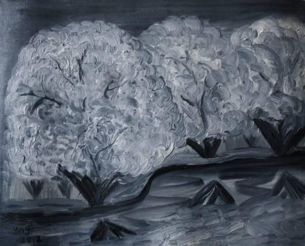 Белые сакуры White Sakura