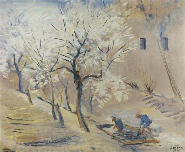 Цветущие абрикосы. 1929