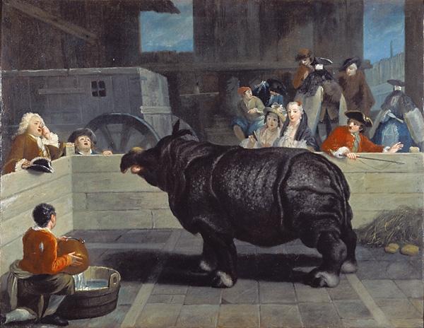 Носорог в Венеции