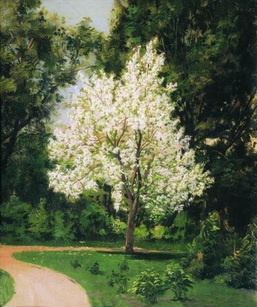Сад при доме Третьяковых. 1877