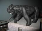 живая тьма ночной тьмы - пантера