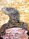Крокодиловый варан, или варан Сальвадора (Varanus salvadorii)