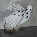 Израильский голубь