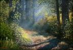 Ласковое утро в Кошевском лесу