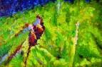 composition35 /  Гайса Зиаенгиров