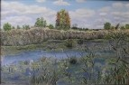 болота Чулыма
