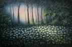 Вечером в лесу в начале лета