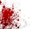 Кровь на снегу