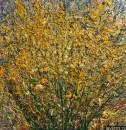 Картина Желтые полевые цветы Золотарник или Золотая розга 1
